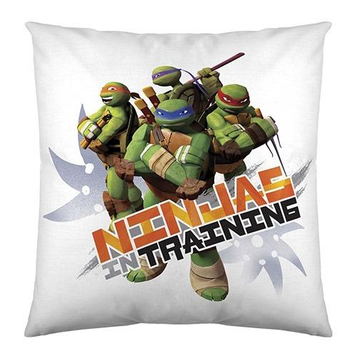 Tortugas Ninja, Cojines