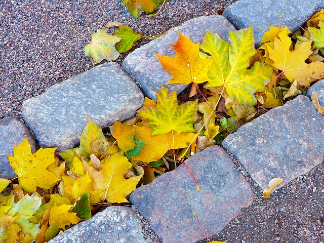 Colores para decorar en otoño