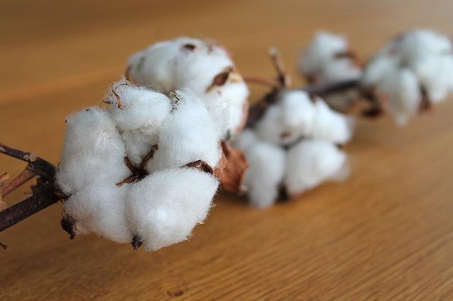 Ropa de cama: algodón o lana